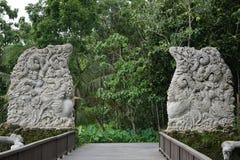 Port i Bali med djungeln i baksidan Arkivbilder
