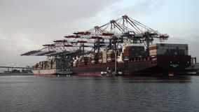 Port of Long Beach stock video