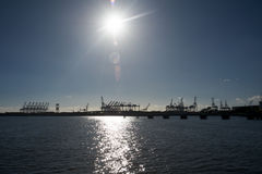 Port of Los Angeles. Panoramic of the Port of Los Angeles from a boat, with cranes back lighted Royalty Free Stock Photography
