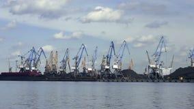 port Många kranar transshipped kol av skytteln Tid schackningsperiod stock video