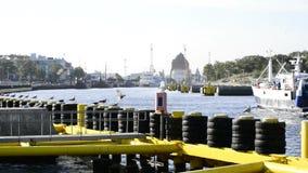 Port maritime de Kolobrzeg, Pologne banque de vidéos