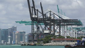 Port of Miami in 4K stock footage