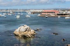 Port Monterey, Kalifornia Zdjęcie Stock