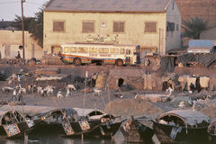 The port of Mopti, Mali Royalty Free Stock Images