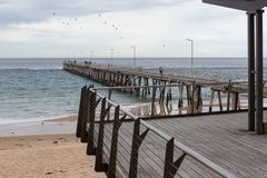 The Port Noarlunga viewing platflorm with the jetty in the back. Ground and flock of birds in South Australia on the 23rd August 2018 royalty free stock image