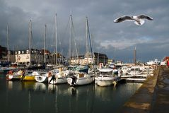 Port of Normandy. With a seagull in flight Royalty Free Stock Images