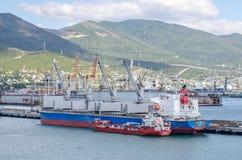 Port Novorossiysk Zdjęcia Stock