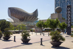 Port Olimpic - Barcelona - Spain royalty free stock image
