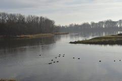 Port på Oder i Nowa solenoid arkivbilder