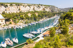 Port Pin in the calanques of Cassis Royalty Free Stock Images