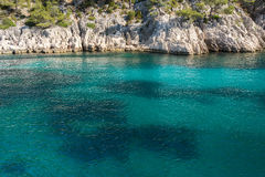 Port Pin in Calanques National Park, France Royalty Free Stock Image