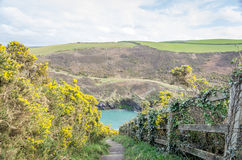 Port Quin in Cornwall England uk Royalty Free Stock Photos