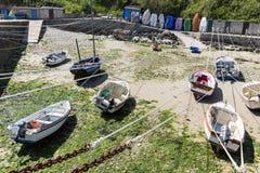 Port Racine är den minsta porten av den Frankrike Cotentin penisulaen Arkivbild