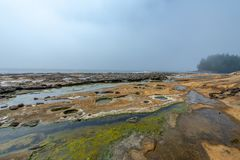 Botanical Beach - Vancouver Island stock images