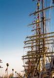 port sänder högväxt Royaltyfri Bild