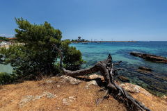 Port Sallor, Mallorca, Spain - panorama.nature Stock Photos