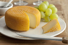 Port salut cheese Royalty Free Stock Images