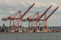 Port of Seattle - Container Cranes Royalty Free Stock Images