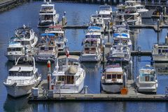 Port of Seattle, USA. Seattle, USA - july 21, 2018 - modern yachts docked in the Port of Seattle, USA royalty free stock images