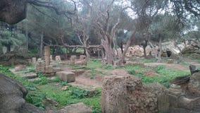 Ruins romain history. Tipaza. algeria Royalty Free Stock Image