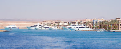 Port with stunning luxurious white yachts, Egypt Royalty Free Stock Images