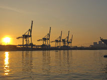 Port at sunset. The cranes of the harbor at sunset Stock Photos