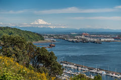 Port Of Tacoma And Mountain royalty free stock images