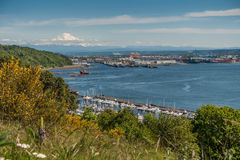 Port Of Tacoma And Mountain Stock Photography