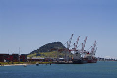 Port of Tauranga Royalty Free Stock Photography
