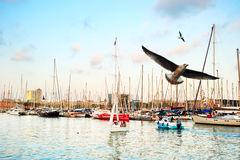 Port Vell, Barcelona Royalty Free Stock Photography