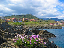 Port Vendres cove. With flowers and buildings Stock Photography