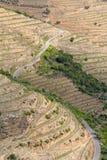 Port wine vineyards slopes stock images