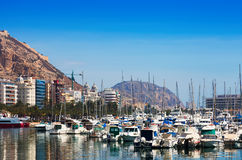 Port with yachts. Alicante Royalty Free Stock Photos