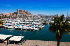Port with yachts and Castle in background. Alicante Royalty Free Stock Photography