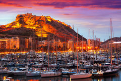 Port with yachts in during sunset. Alicante Royalty Free Stock Photo