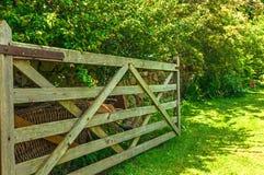 Porta aberta no campo do prado Imagens de Stock Royalty Free