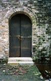 Porta antiga do ferro e musgo verde na parede antiga Fotos de Stock Royalty Free