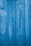 Porta azul ilustração do vetor