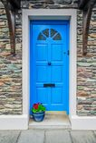 Porta azul e planta em pasta imagens de stock royalty free