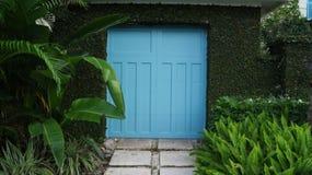 Porta blu del portone ad una struttura del garage o del giardino dalle piante tropicali e dalle foglie verdi fotografia stock libera da diritti