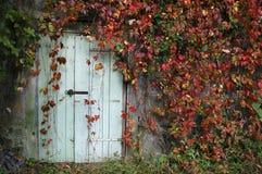 Porta cercada pelas folhas vermelhas Fotografia de Stock Royalty Free