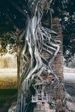 Porta da época do templo antigo de Wat Phra Ngam imagens de stock royalty free