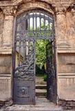Porta da casa do ferro Imagem de Stock