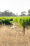 Porta da exploração agrícola Fotos de Stock