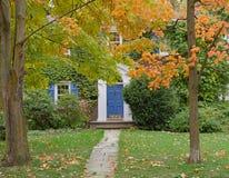 Porta da rua coberta com as videiras e as árvores fotos de stock
