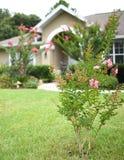 Porta da rua com casa do estilo de Florida do arco Foto de Stock