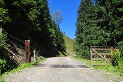 Porta da vaca e dos rebanhos animais, cumes, Áustria Fotografia de Stock Royalty Free