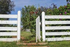 Porta de jardim Foto de Stock Royalty Free