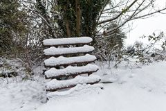 Porta de madeira coberto de neve Foto de Stock Royalty Free