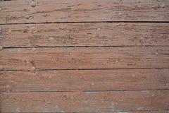 Porta de madeira pintada com cabeças dos pregos Imagem de Stock